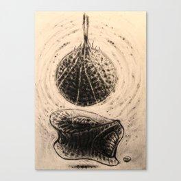 Geometric womb Canvas Print