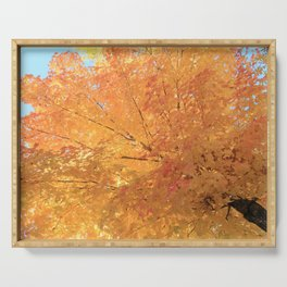 Autumn Explosion Serving Tray