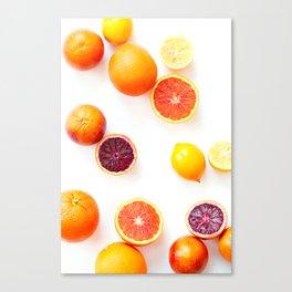 Winter Citrus 1 Canvas Print