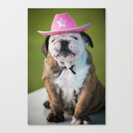 Cowgirl Puppy Canvas Print