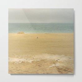 landscape 005: lone seagull Metal Print