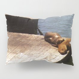 Sunbathing Seals Pillow Sham