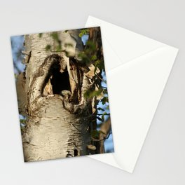 First baby barred owl to appear inside nest Stationery Cards