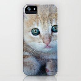 Red Kitten iPhone Case