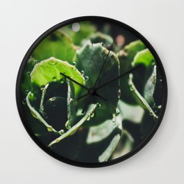 Green Sedum Wall Clock