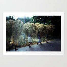 Haystacks, Goa, India Art Print
