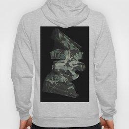 Abstract #451 Hoody