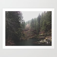 Bridge at Moulton Falls, WA Art Print