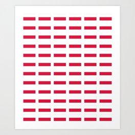 Flag of poland – poland,Polish,Polska,pole,Warsaw,krakow Art Print