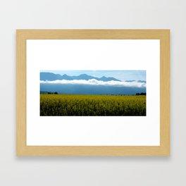 Mustard in Bloom Framed Art Print