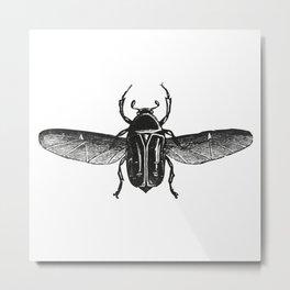 Bug 2 Metal Print