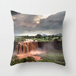 Nile Falls Throw Pillow