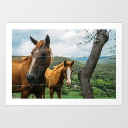 Mother and Daughter (Colombia) Art Print