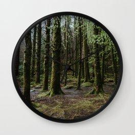 Woods in Killarney National Park Wall Clock