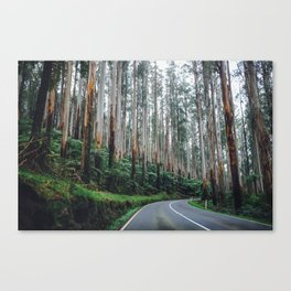 Black Spur Canvas Print