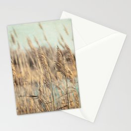 Marsh Grasses Stationery Cards