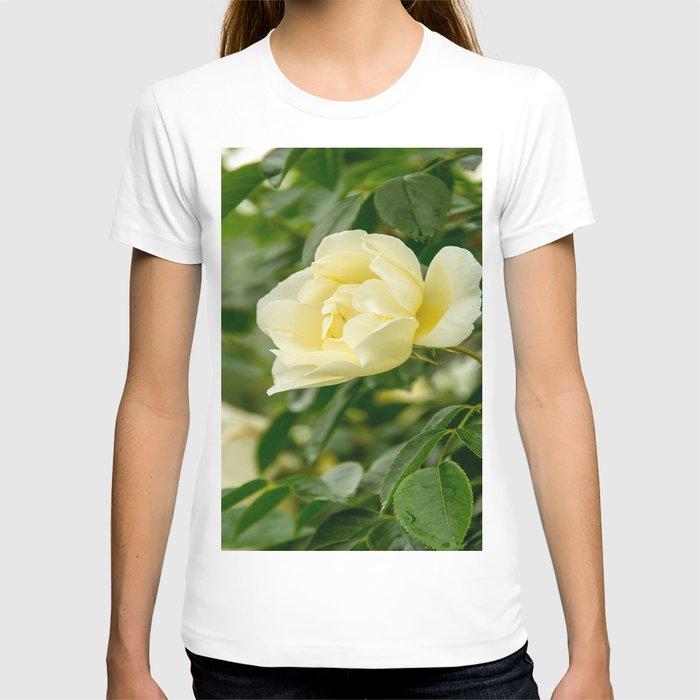City of York Rose T-shirt