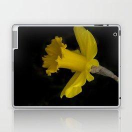 blossoms on black background -03- Laptop & iPad Skin