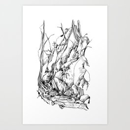 Forest Ferns : Mount Baker Art Print