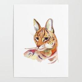 Serval wild cat watercolor Poster