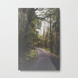 Tasmania | Cradle Mountain Road Metal Print
