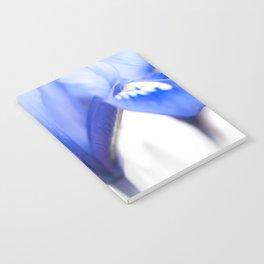 Blue Iris 1 Notebook