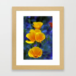 Poppies in a sea of Lobilia Framed Art Print