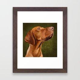 Magyar Vizsla portrait Framed Art Print