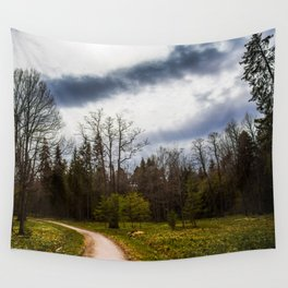 road in a forest Wall Tapestry