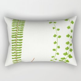 Edward Joseph Lowe - Asplenium Monanthemum Rectangular Pillow