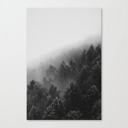 Misty Forest II Canvas Print