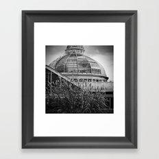 'Allen Gardens 2' Framed Art Print