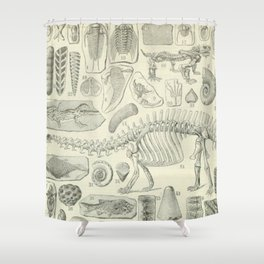 Fossil Chart Shower Curtain