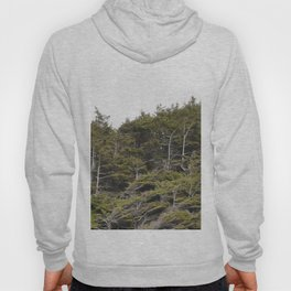 Standing Strong Hoody