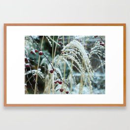 Cherry Snow Framed Art Print