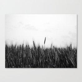 Whole Grain Canvas Print