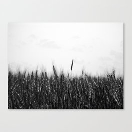 Whole Grain Canvas Print