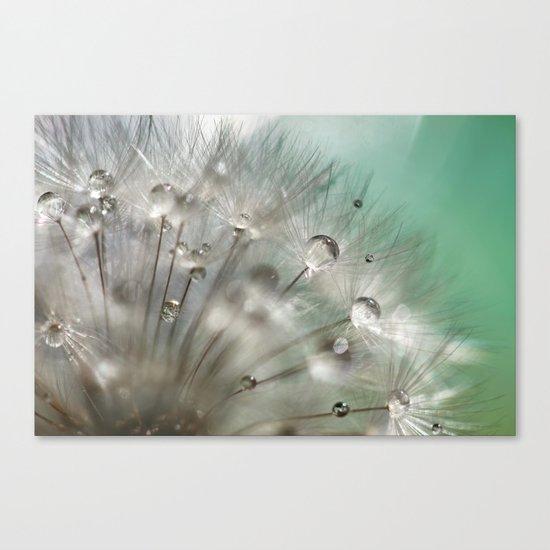 Silver Mint Dandelion Canvas Print