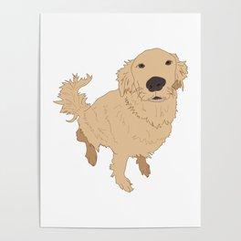 Golden Retriever Illustration on a White Background Poster
