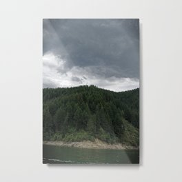 Dworshak Trees Metal Print