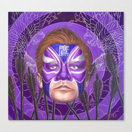 Hawk eye Canvas Print