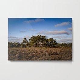 Dutch landscape colorful photography - Framed Art Work  Metal Print