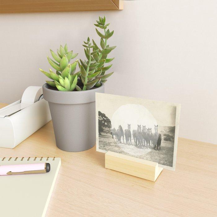 Band of Horses - White Mini Art Print