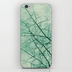 Tree In Green iPhone & iPod Skin