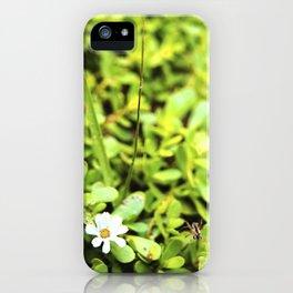 La vida  iPhone Case