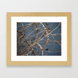 Lake Weed Framed Art Print