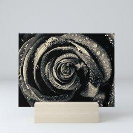 Black rose. Mini Art Print