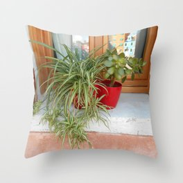 House Plants in Burano Throw Pillow
