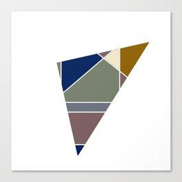 Tano Color  Canvas Print