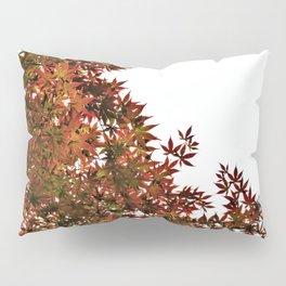 Changing of Seasons Pillow Sham